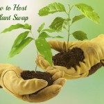 How to Host a Plant Swap