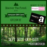 Discover the Forest $100 Amazon GC Giveaway