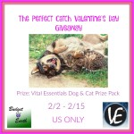 The Perfect Catch Valentine's Day Giveaway