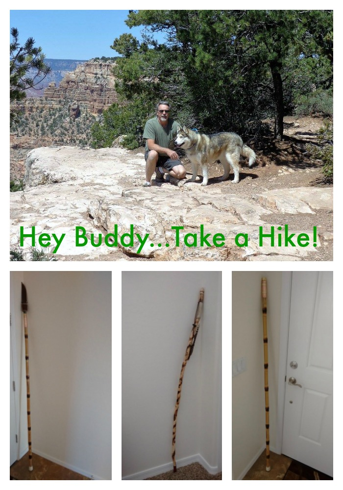 Hiking stick collage