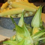 Freezing the Bounty Of The  Sweet Corn Harvest